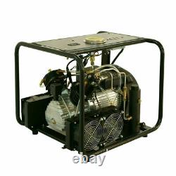 110V 4500psi Air Compressor 60L/min for Paintball PCP Air Gun Rifle Tank Refill